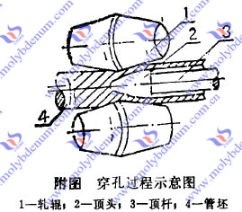 molybdenum alloy head